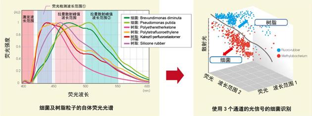 图3.微生物及树脂粒子的荧光光谱的区别(左)、利用3个频道的光信号来识别微生物的概念图(右)(右)