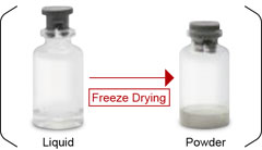 Figure 1. Freeze drying is used to turn liquid into powder.