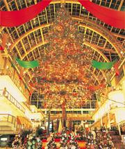 サッポロファクトリーアトリウム内に設置される、16mのジャンボクリスマスツリーは、屋内日本最大級。札幌の冬の風物詩となっています