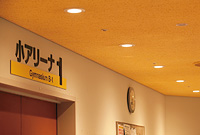 スポーツ医科学センター内、アリーナ前エントランスの照明をLED化。明るさはほとんど変わらず省エネルギーを実現。