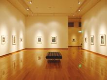 佐倉・房総ゆかりの作家作品が展示され、定期的に企画展も開催されている。